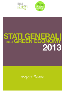 cover_report_finale_sgge_2013